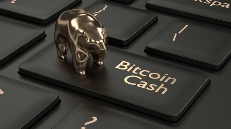 Comprar bitcoin cash argentina