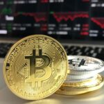 Bitcoin circuit opiniones